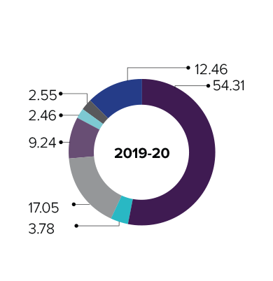 CONSOLIDATED BASIS FY 20 (IN %)