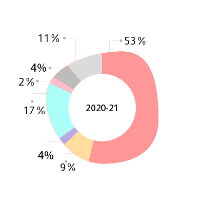 CONSOLIDATED BASIS FY 21 (IN %)